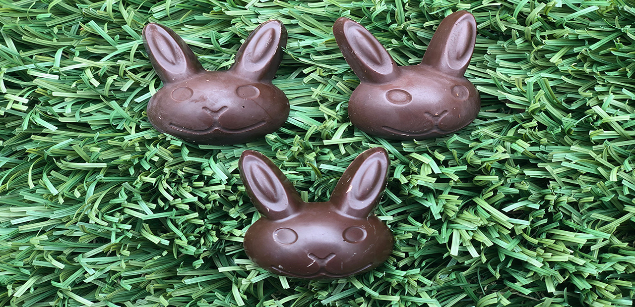 Chocolate Bunnies - Benefiting Rabbit Rescue!